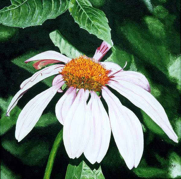 Daisy Poster featuring the painting Lazy Day by Carol Messman Steele