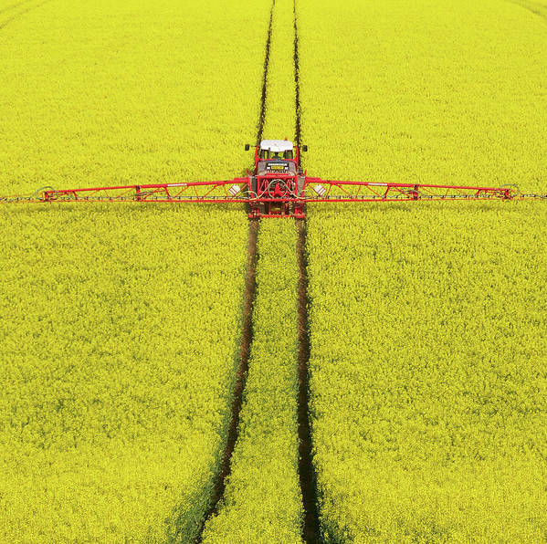 Horizontal Poster featuring the photograph Rape Seed Spraying by JT images