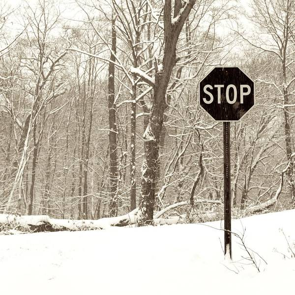 Road Sign Poster featuring the photograph Stop Snowing by John Stephens