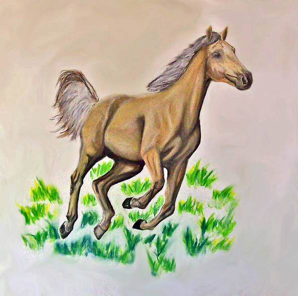 Palomino Poster featuring the drawing Palomino by Crystal Suppes
