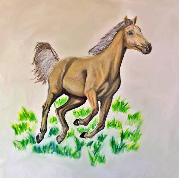 Charcoal Poster featuring the drawing Palomino by Crystal Suppes