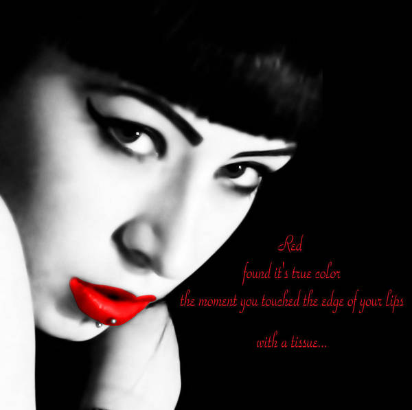 Poetry Poster featuring the photograph Midnight Ruby by Bruce Tracy