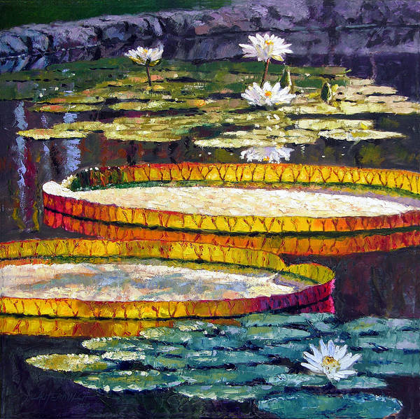 Water Lilies Poster featuring the painting Morning Glow by John Lautermilch