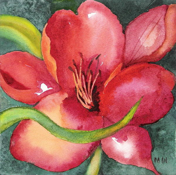 Flower Lily Red Green Garden Floral Watercolor Painting Poster featuring the painting Red Lily by Marsha Woods