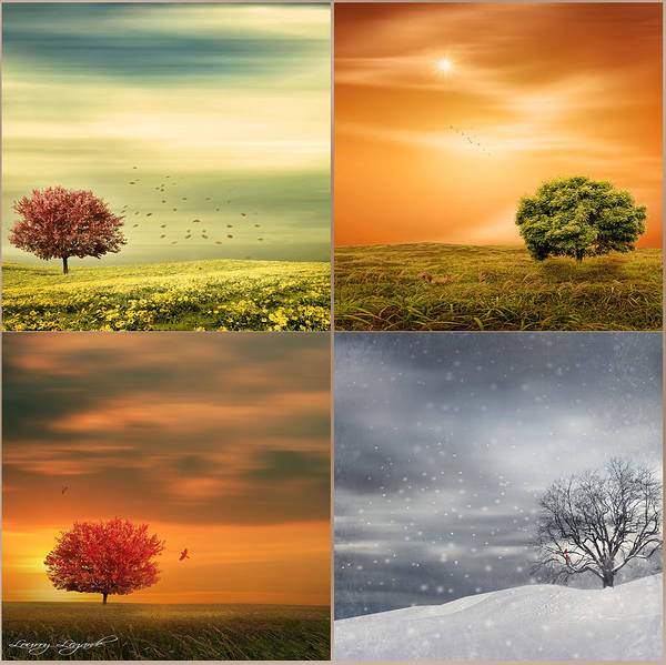Four Seasons Poster featuring the photograph Seasons' Delight by Lourry Legarde