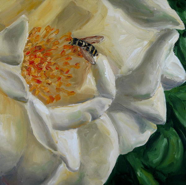 White Rose Poster featuring the painting White Rose by Robin Mann