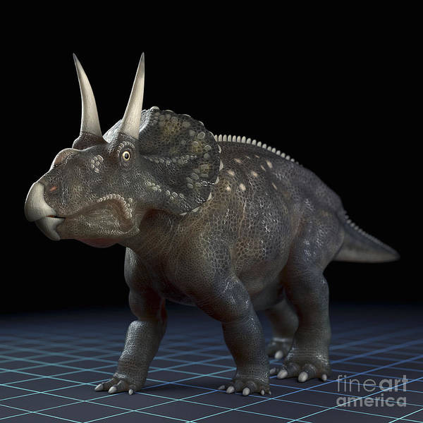 Extinction Poster featuring the photograph Dinosaur Diceratops by Science Picture Co
