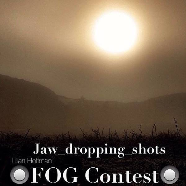Jaw_dropping_shots Poster featuring the photograph Instagram Photo by Larry Marshall