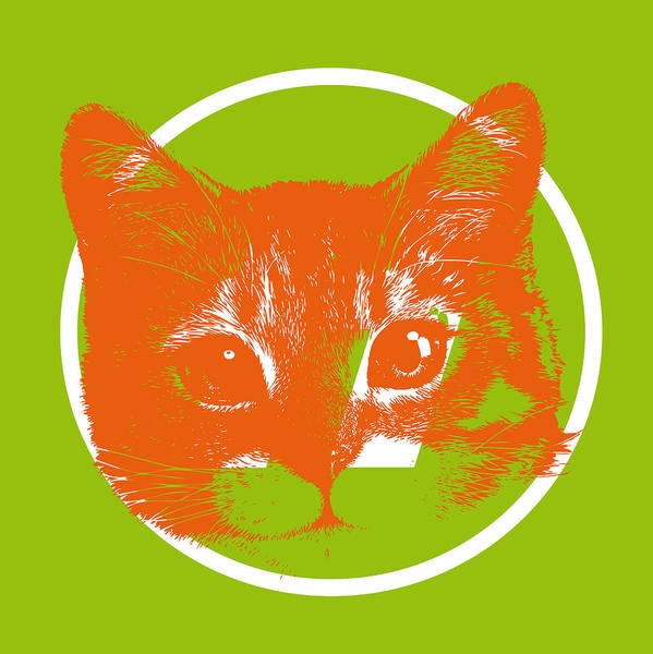 A Cat Poster featuring the digital art A Cat by D H Carter
