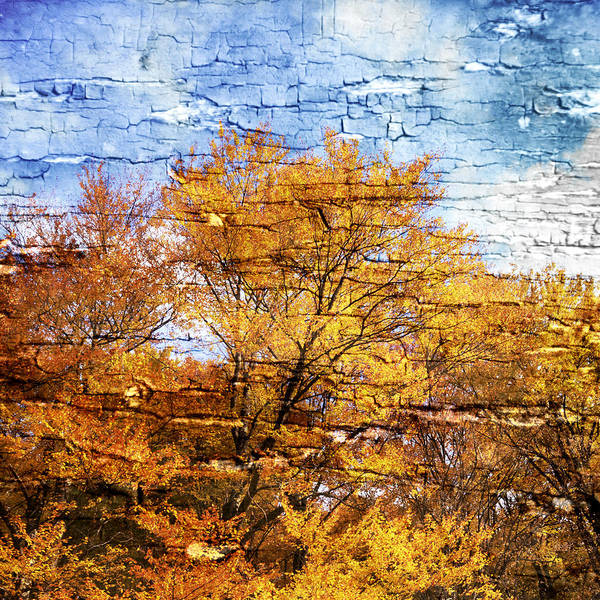 Autumn Poster featuring the photograph An Autumn Day by Paula Belle Flores