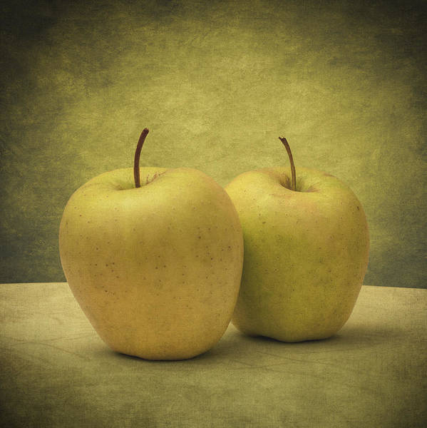 Apples Poster featuring the photograph Apples by Taylan Apukovska