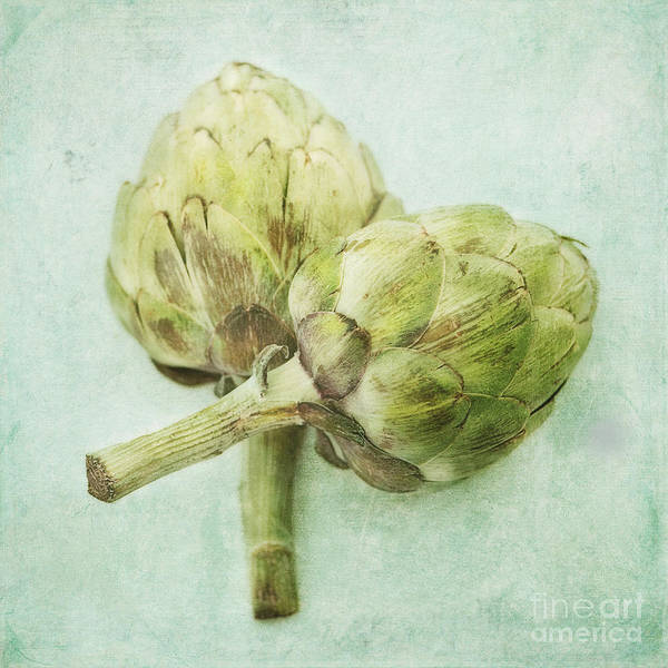 Light Poster featuring the photograph Artichokes by Priska Wettstein