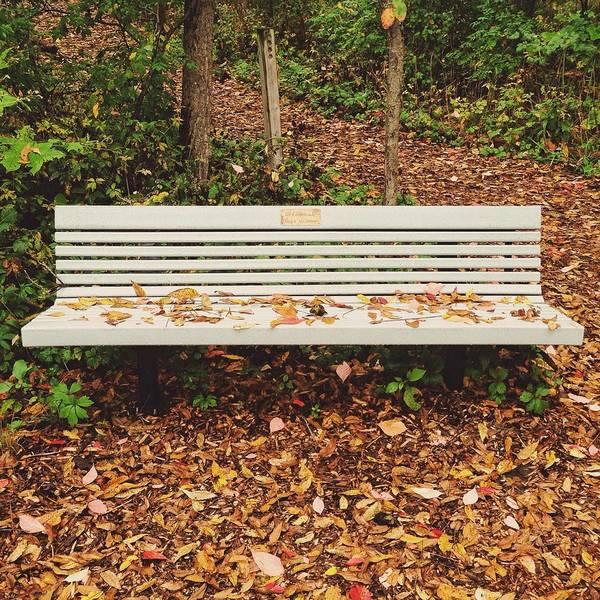 Park Poster featuring the photograph Autumn Park Bench by Nikki Watson  McInnes
