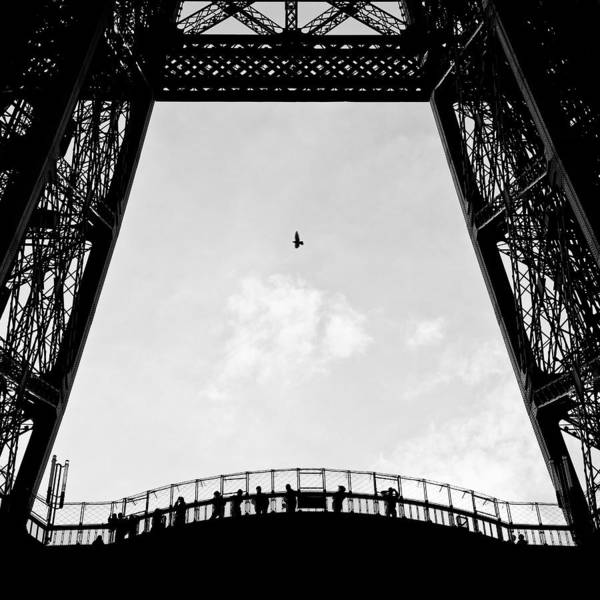 Eiffel Tower Poster featuring the photograph Birds-eye View by Dave Bowman