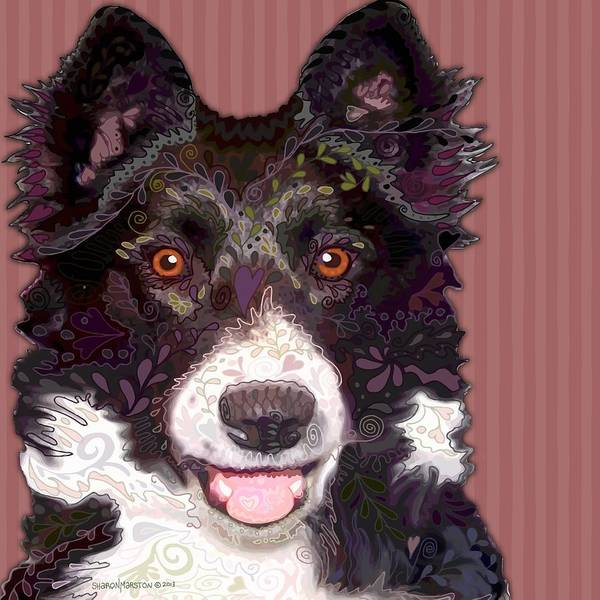 Border Collie Poster featuring the painting Border Collie by Sharon Marcella Marston