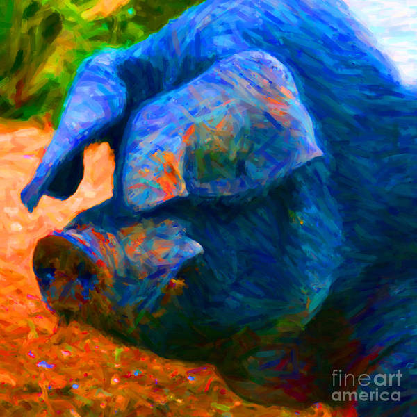 Animal Poster featuring the photograph Boss Hog - 2013-0108 - Square by Wingsdomain Art and Photography