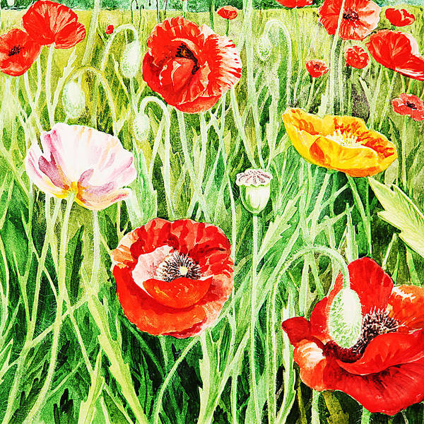 Poppies Poster featuring the painting Bunch Of Poppies II by Irina Sztukowski