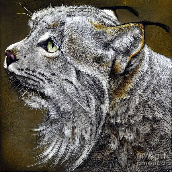 Lynx Poster featuring the painting Canadian Lynx by Jurek Zamoyski