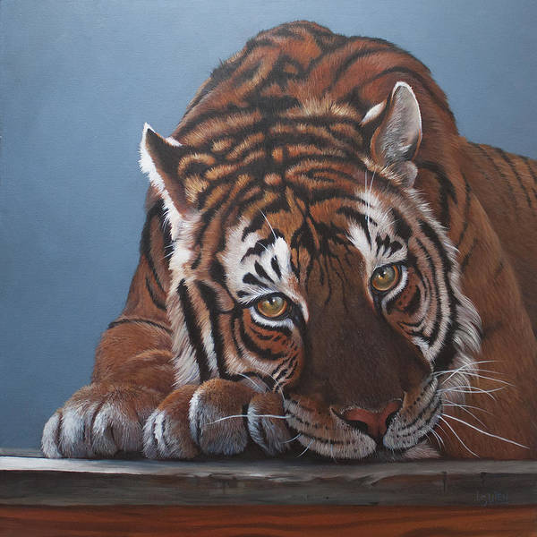 Tiger Poster featuring the painting Contemplation Bengali by Lorraine Ulen