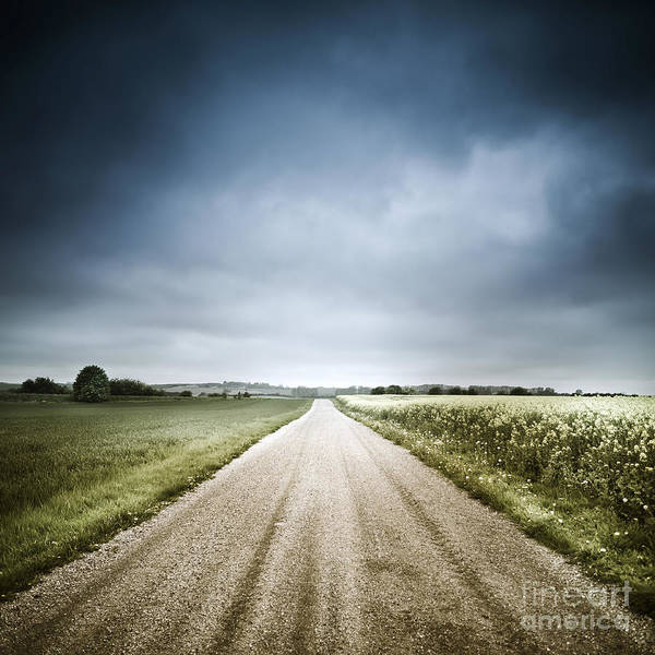 Denmark Poster featuring the photograph Country Road Through Fields, Denmark by Evgeny Kuklev