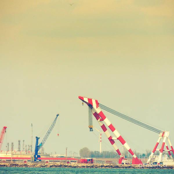 Shipyard Poster featuring the photograph Cranes by Gabriela Insuratelu