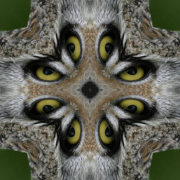 Owl Poster featuring the digital art Eery Eyes - 1 by Patsy Zedar