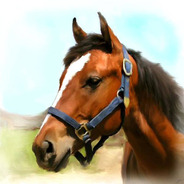 Brown Poster featuring the painting Filly by Paul Tagliamonte