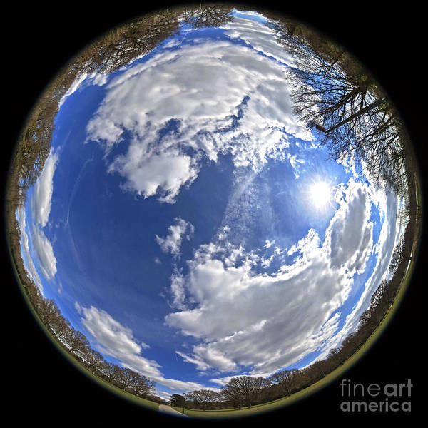 Background Poster featuring the photograph Fisheye Park by Jane Rix