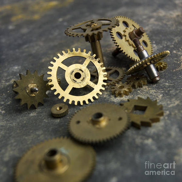 Studio Shot; Textured Background; Textured Effect; Still Life; Close-up; Cut Out; Nobody; Several Objects; Tool; Axle Gear; Gears; Detail; Mechanism; Metal; Accuracy; Circle; Deserted; Disc; Disk; Filming; Hole; Indoors; Industry; Jag; Mechanically; Gold; Round; Spinning; Sprocket; Technology; Transmission Device; Turning Poster featuring the photograph Gears by Bernard Jaubert