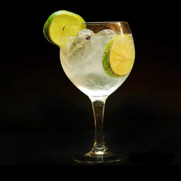 Gin Poster featuring the photograph Gintonic by Gina Dsgn
