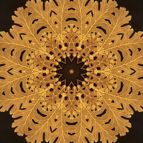 Gold Poster featuring the digital art Gold Oak Leaves by Dawn LaGrave