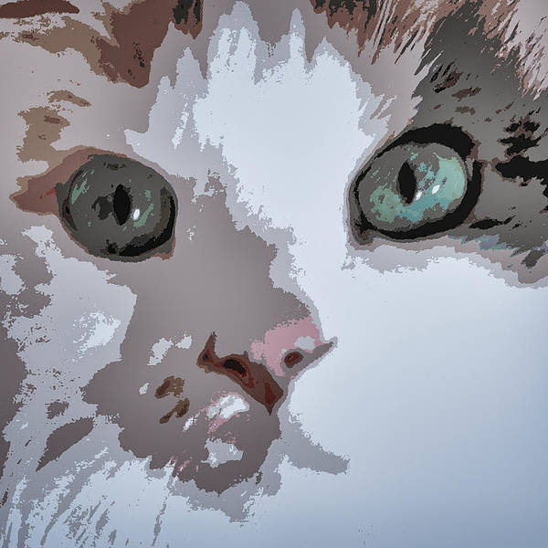 Cat Poster featuring the photograph Green Eyes by Patricia Januszkiewicz