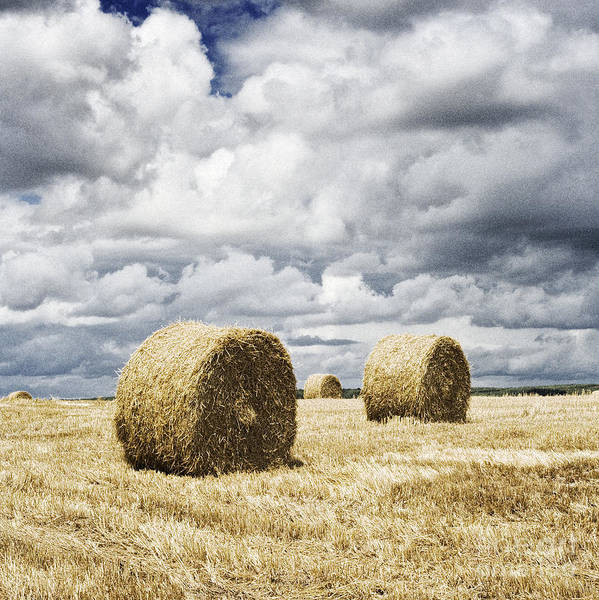 Hay Bales Poster featuring the photograph Haybales In A Field In England Uk by Jon Boyes