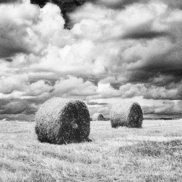 Hay Bales Poster featuring the photograph Haybales Uk by Jon Boyes
