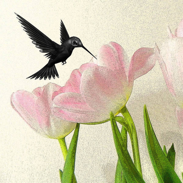 Hummingbirds Poster featuring the photograph Hummingbird by Sharon Lisa Clarke
