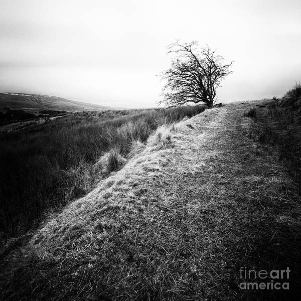 Black And White. Mono. Monochromatic Poster featuring the photograph Its Hard To Imagine by John Farnan