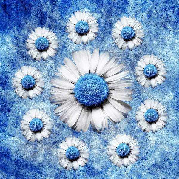 Marguerites Digital Art Poster featuring the digital art La Ronde Des Marguerites - Blue V05 by Variance Collections