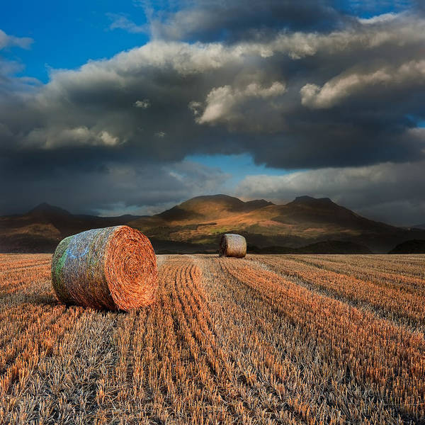 Landscape Poster featuring the photograph Landscape Of Hay Bales In Front Of Mountain Range With Dramatic by Matthew Gibson