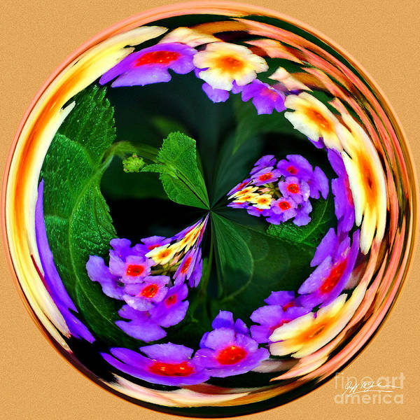 Orb Poster featuring the photograph Lantana Orb by Jeff McJunkin