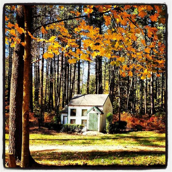 Fall Poster featuring the photograph Little Cabin In The Woods by Amanda Enos