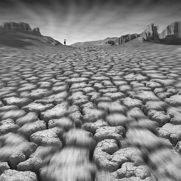 Cracked Desert Poster featuring the photograph Long Walk On A Hot Day by Mike McGlothlen