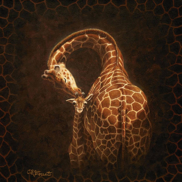 Giraffe Poster featuring the painting Love's Golden Touch by Crista Forest