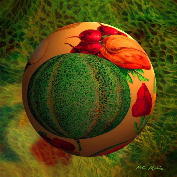 Melon Poster featuring the digital art Melon Ball by Robin Moline