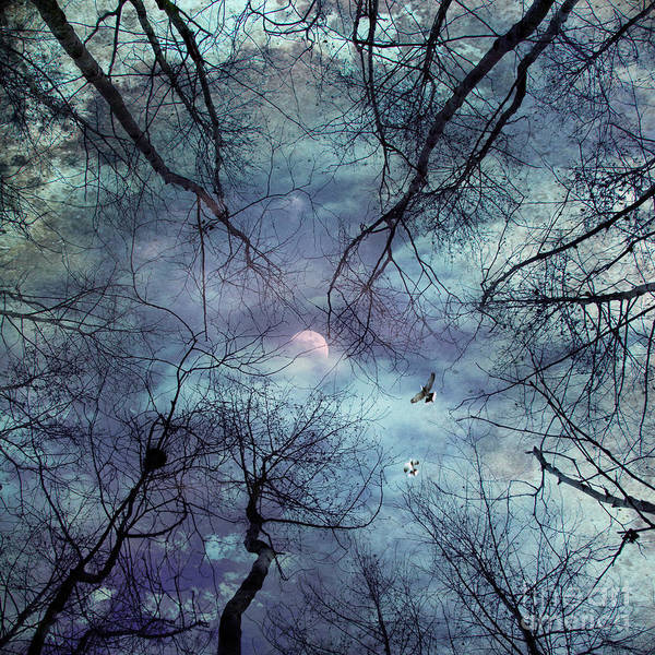 Abstract Poster featuring the photograph Moonlight by Stelios Kleanthous