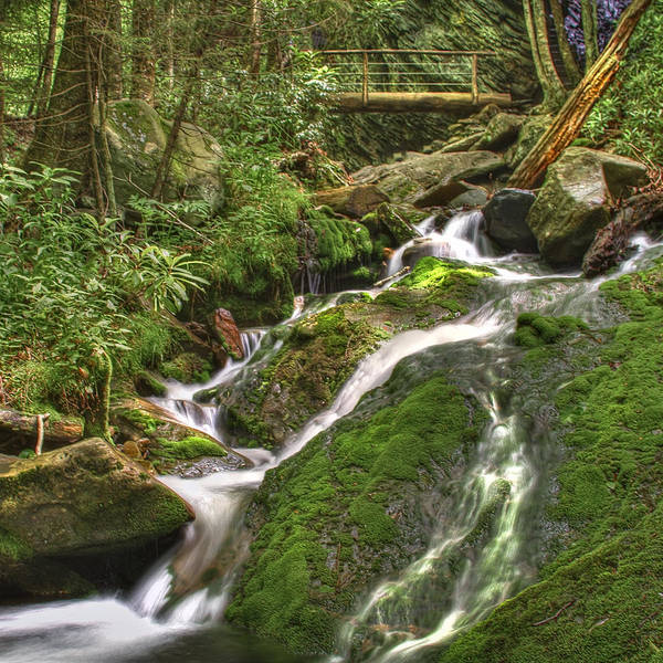 Appalachia Poster featuring the photograph Mossy Creek by Debra and Dave Vanderlaan