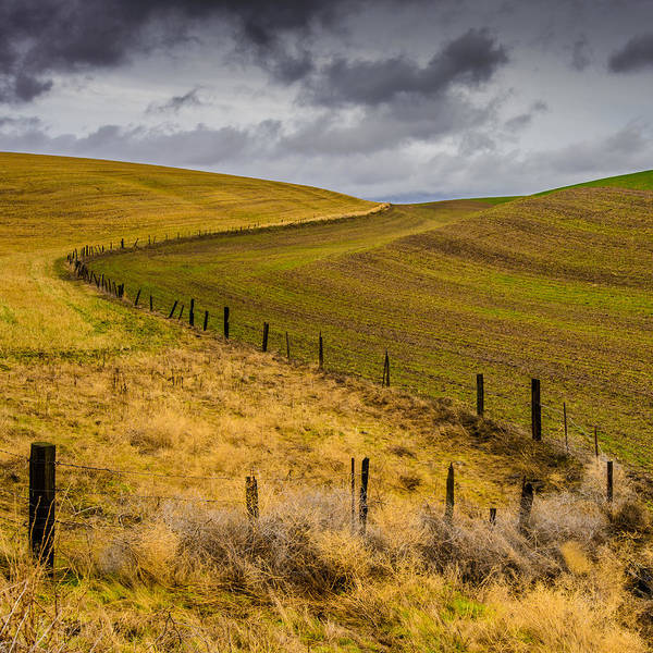 The Palouse Poster featuring the photograph Neighbors by Dan Mihai