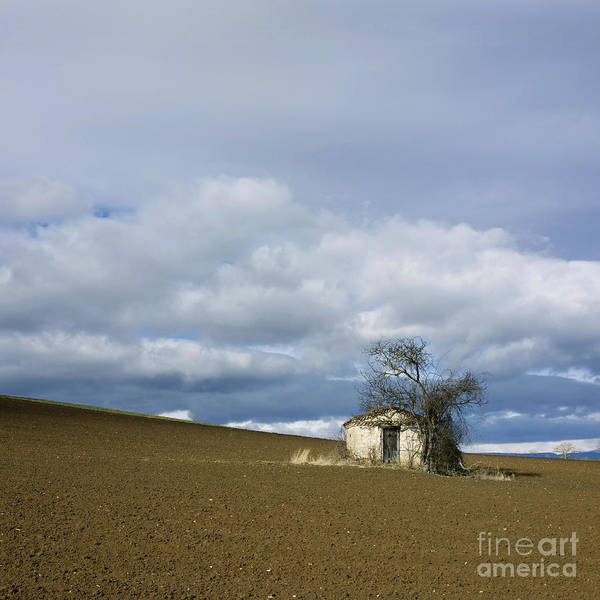 Outdoors Poster featuring the photograph Old Hut. Auvergne. France by Bernard Jaubert