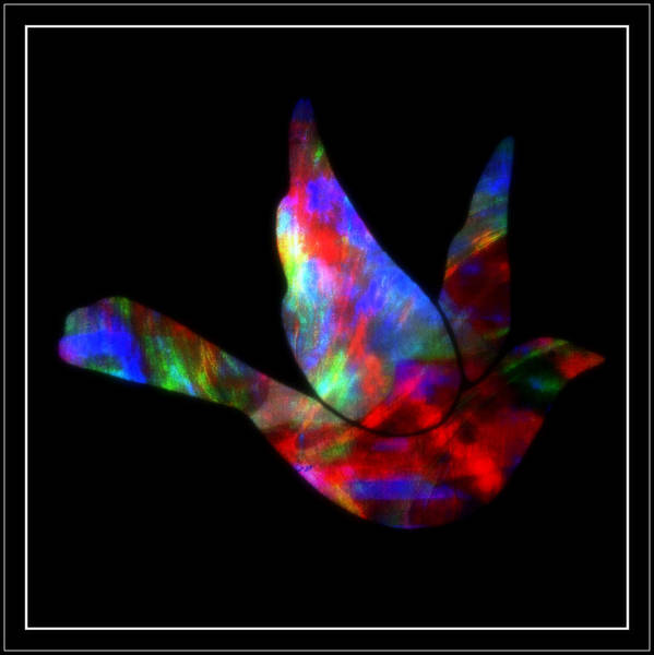 Peace Poster featuring the mixed media Peace Series Xxvii by Wendie Busig-Kohn