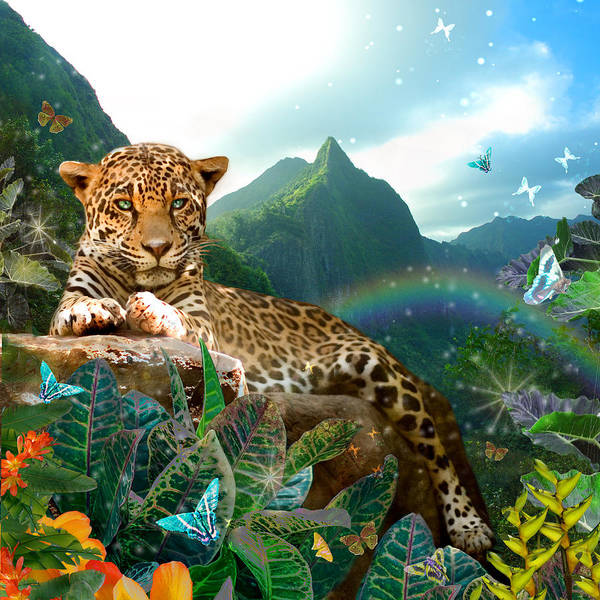 Alixandra Mullins Poster featuring the photograph Pretty Jaguar by Alixandra Mullins