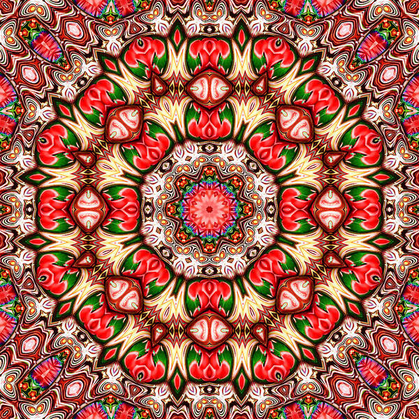 Kaleidoscope Poster featuring the digital art Rose Marie by Wendy J St Christopher
